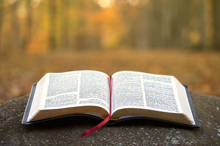 January 12, 2021 – A Man of the Word